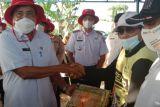 Dinas Pertanian Sulsel salurkan 177.075 kg benih kepada petani Wajo
