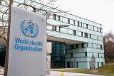 WHO rilis rencana cegah pelecehan seksual setelah skandal Kongo