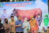 Tim verifikasi Kabupaten/Kota Sehat kunjungi Sinjai