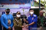 PT Timah Tbk - TNI tanam 5.000 mangrove di Pantai Bangka