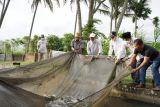Tingkatkan hasil produksi, Tanah Datar perkenalkan teknologi baru  budidaya ikan