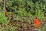 Basarnas hentikan pencarian terhadap petani hilang di hutan Mahalona Luwu Timur