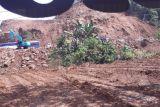 Pemkab Mamuju buka-tutup jalan poros Mamuju-Majene akibat longsor