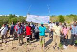 PLN gandeng Pemda Sikka tanam 2.000 bibit pohon bakau