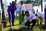 Polres Batang tanam 60 ribu  mangrove cegah abrasi