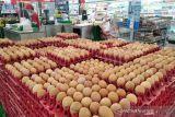 RNI: Digitalisasi sektor pangan sangat penting untuk turunkan biaya produksi