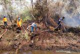 Lahan gambut terbakar di Aceh Barat bertambah jadi 2,2 hektare