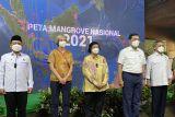Pemerintah umumkan luas lahan mangrove jadi 3,364 juta hektare pada 2021