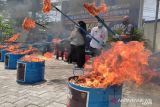 Bea Cukai Luwuk musnahkan ribuan rokok dan miras ilegal di Banggai