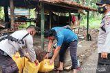 Polisi musnahkan satu ton cap 'Tikus' di Banggai