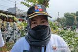 Pemkot Bogor inventaris pohon-pohon rawan tumbang