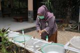 Pengelola objek wisata di Lampung sebut CHSE mampu tumbuhkan pariwisata