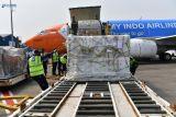 Sebanyak 601.380 vaksin Pfizer dan AstraZeneca tiba di Indonesia