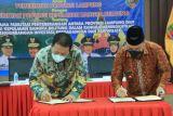 Lampung-Babel jalin kerja sama bangun jalur transportasi laut