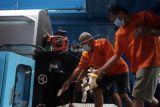Bareskrim Polri memusnahkan jutaan butir obat keras ilegal di DIY