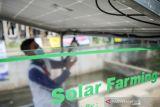 Warga memasang lampu di perkebunan pekarangan perumahan yang sudah terintegrasi dengan panel surya di Perumahan De Marrakesh, Derwati, Bandung, Jawa Barat, Kamis (14/10/2021). Warga di perumahan tersebut berinisiatif untuk melakukan inovasi cara berkebun di pekarangan dengan menggunakan panel surya untuk sistem pengairan dan pencahayaan guna mewujudkan perkebunan ramah lingkungan. ANTARA FOTO/Raisan Al Farisi/agr