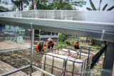 Warga merawat sayuran di perkebunan pekarangan perumahan yang sudah terintegrasi dengan panel surya di Perumahan De Marrakesh, Derwati, Bandung, Jawa Barat, Kamis (14/10/2021). Warga di perumahan tersebut berinisiatif untuk melakukan inovasi cara berkebun di pekarangan dengan menggunakan panel surya untuk sistem pengairan dan pencahayaan guna mewujudkan perkebunan ramah lingkungan. ANTARA FOTO/Raisan Al Farisi/agr