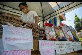 FAO  desak sediakan pangan bergizi, terjangkau dan murah di Sulteng