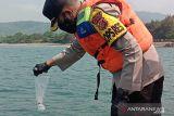 Polres Sukabumi lepasliarkan ribuan ekor benur lobster hasil sitaan