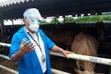 Bupati Buol harap Pemprov Sulteng  kembangkan peternakan berbasis teknologi