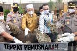 Menyaksikan satu bentuk komit berantas narkotika oleh Pemkab Pasbar-BNNK