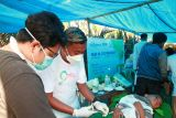 Dompet Dhuafa gelar sunat dan periksa kesehatan warga TTS