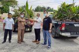 PT Semen Padang serahkan bantuan 1.000 bibit  kelapa untuk kelompok petani di Dharmasraya