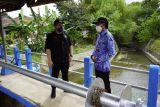 Pemkab Kediri segera perbaiki infrastruktur dam untuk cegah banjir