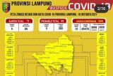 Dinkes: Lima daerah sumbang penambahan 10 kasus baru COVID-19 di Lampung