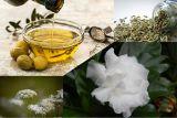 Pasien COVID-19 bisa diterapi dengan tanaman herbal