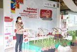 Badan Otorita Labuan Bajo Flores bentuk ekosistem sehat UMKM di Nusa Tenggara