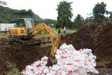 Karantina Pertanian Gorontalo musnahkan 14 ton daging ayam tak layak konsumsi