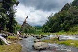 Desa Cawang Lama Rejang Lebong kembangkan wisata sungai