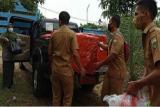 BPTP Jambi beri bantuan fasilitas pengemas produk  nanas tangkit