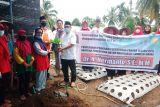 Anggota DPR RI bantu kelompok tani wanita di Solok