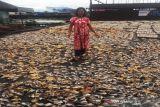 Pelaku UMKM Desa Jantur Kukar Kaltim butuh modal kredit berbunga rendah