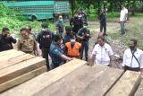 Tersangka penyelundupan kayu ilegal di Sulteng bertambah satu orang
