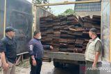 KLHK dan Korem 031/WB amankan kayu ilegal dari Cagar Biosfer Giam Siak Kecil