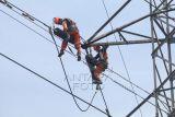 Upaya PLN turunkan emisi karbon