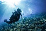Sandi sebut potensi wisata bahari Raja Ampat sangat besar