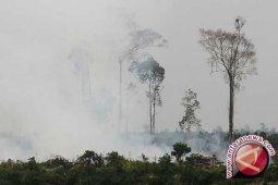 Satelit Deteksi 12 Titik Panas di Sumatera