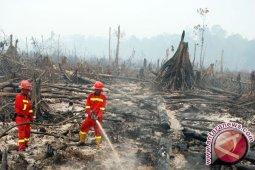 Waspadai Potensi Karhutla di Sumatera-Kalimantan