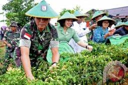 Govt leans on development agenda to push Papua autonomy