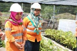 Perempuan dibalik rehabilitasi lahan Tambang Emas Martabe