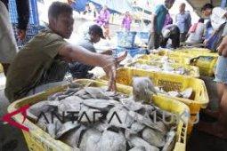 Ikan segar di pasar Ambon murah