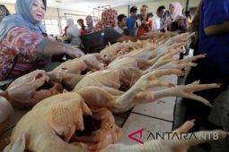 Harga daging ayam mulai naik menjelang Lebaran