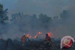 Ratusan Brimob dikerahkan atasi Karhutla di Riau