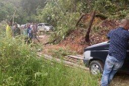Jalur lintas Pidie-Aceh barat lumpuh akibat longsor