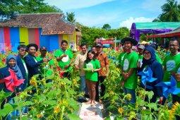 Taman bunga matahari, destinasi wisata populer warga Bekasi