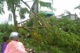BMKG: Masyarakat di Barat Selatan Aceh waspadai angin kencang